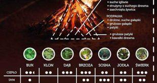 kaloryczność drewna cieplo dymienie czas spalania drzew